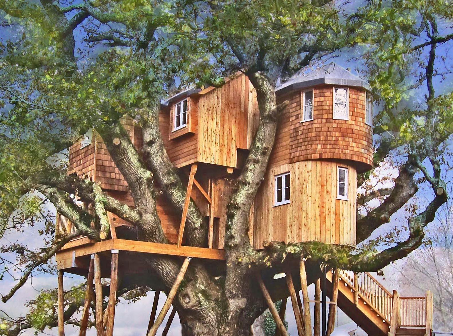 tree house ile ilgili görsel sonucu