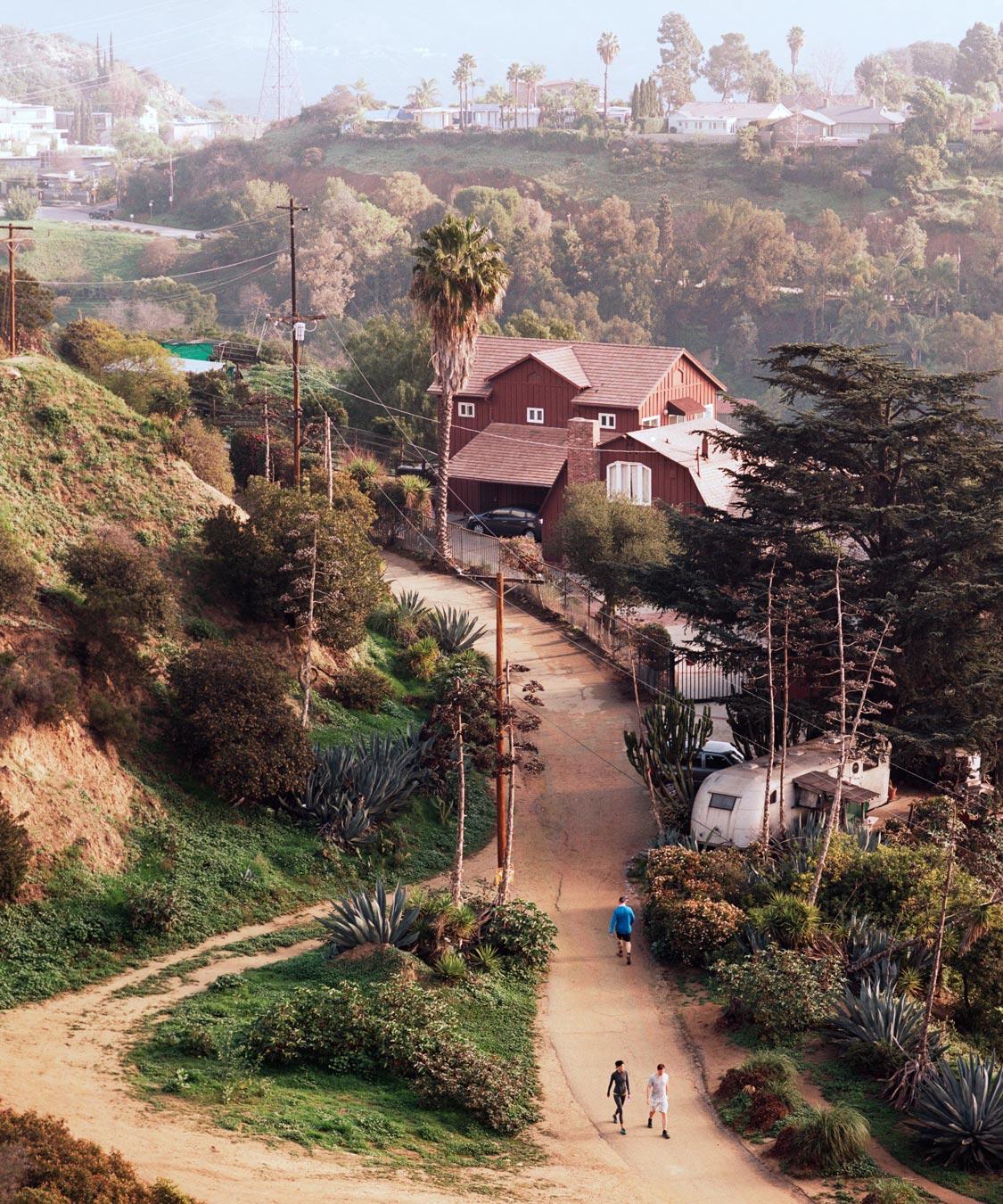 Cakey-Landscape