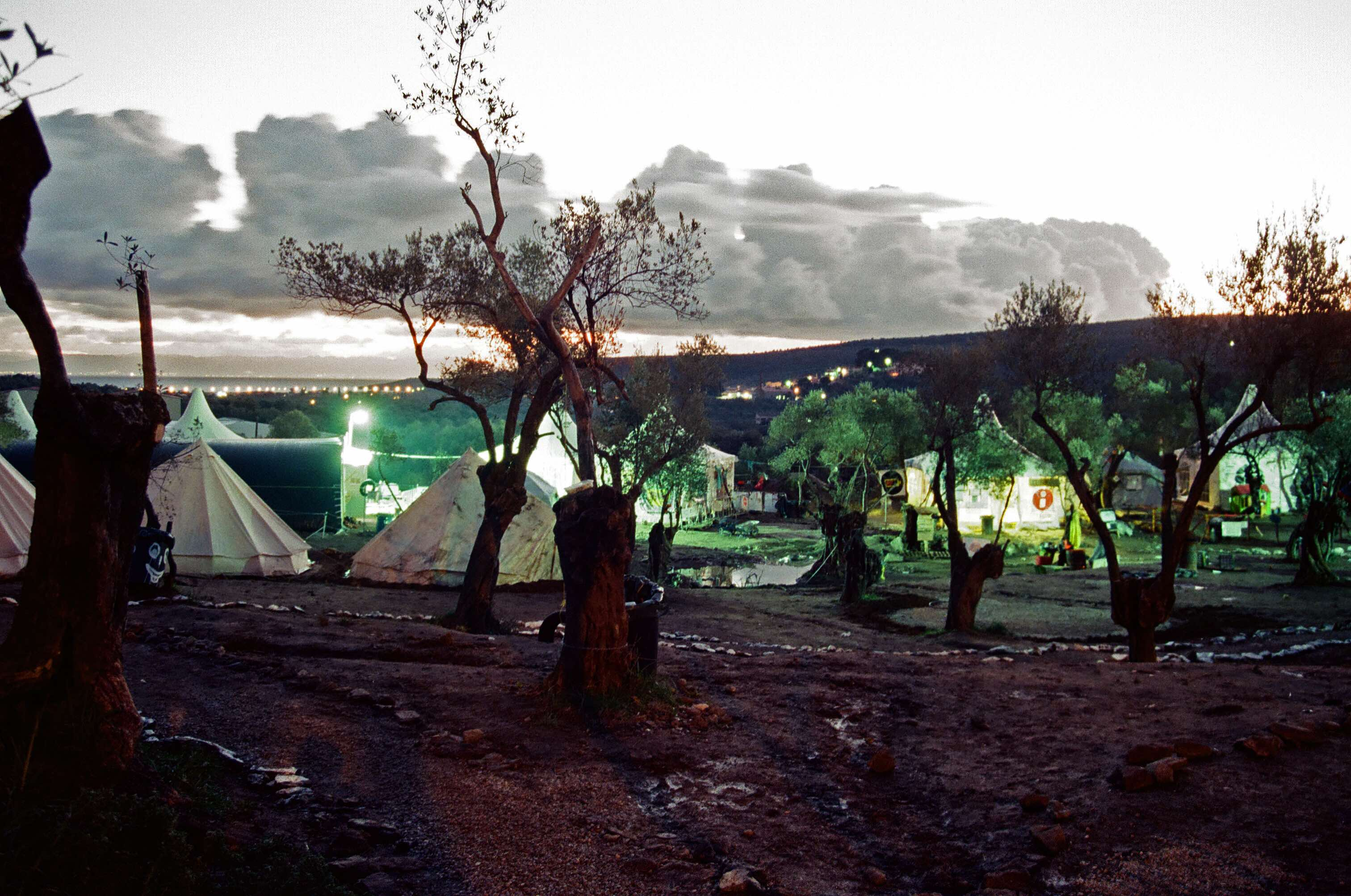 The Olive Grove unofficial camp. Photo by Bailey Tom Bailey