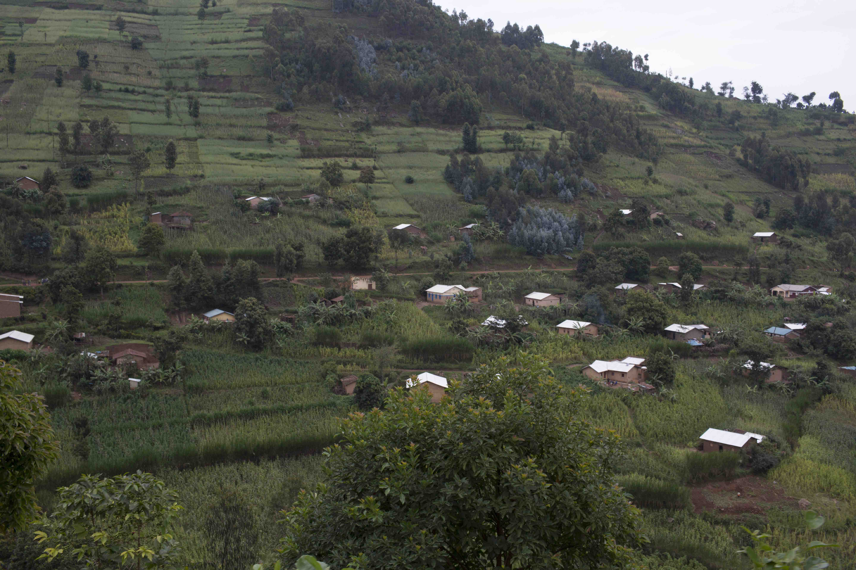 Rural houses on Rwanda's famed rolling hills, Musanze province