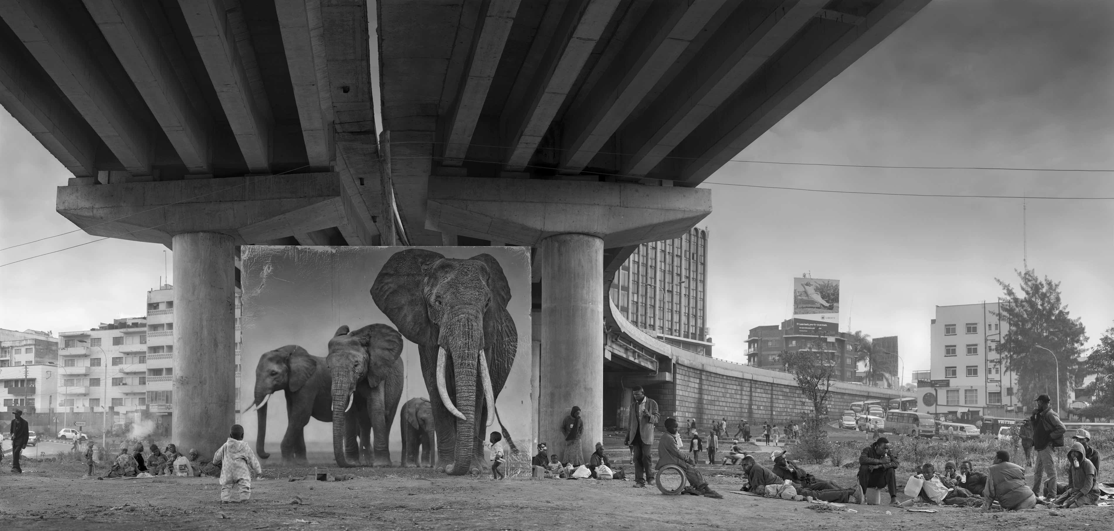'Underpass With Elephants'