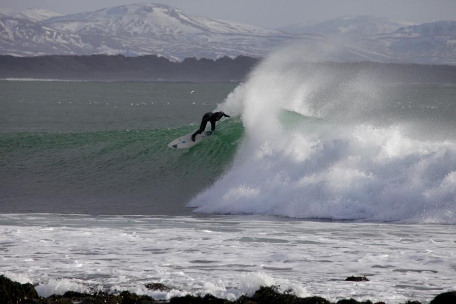 LEA SURF 3