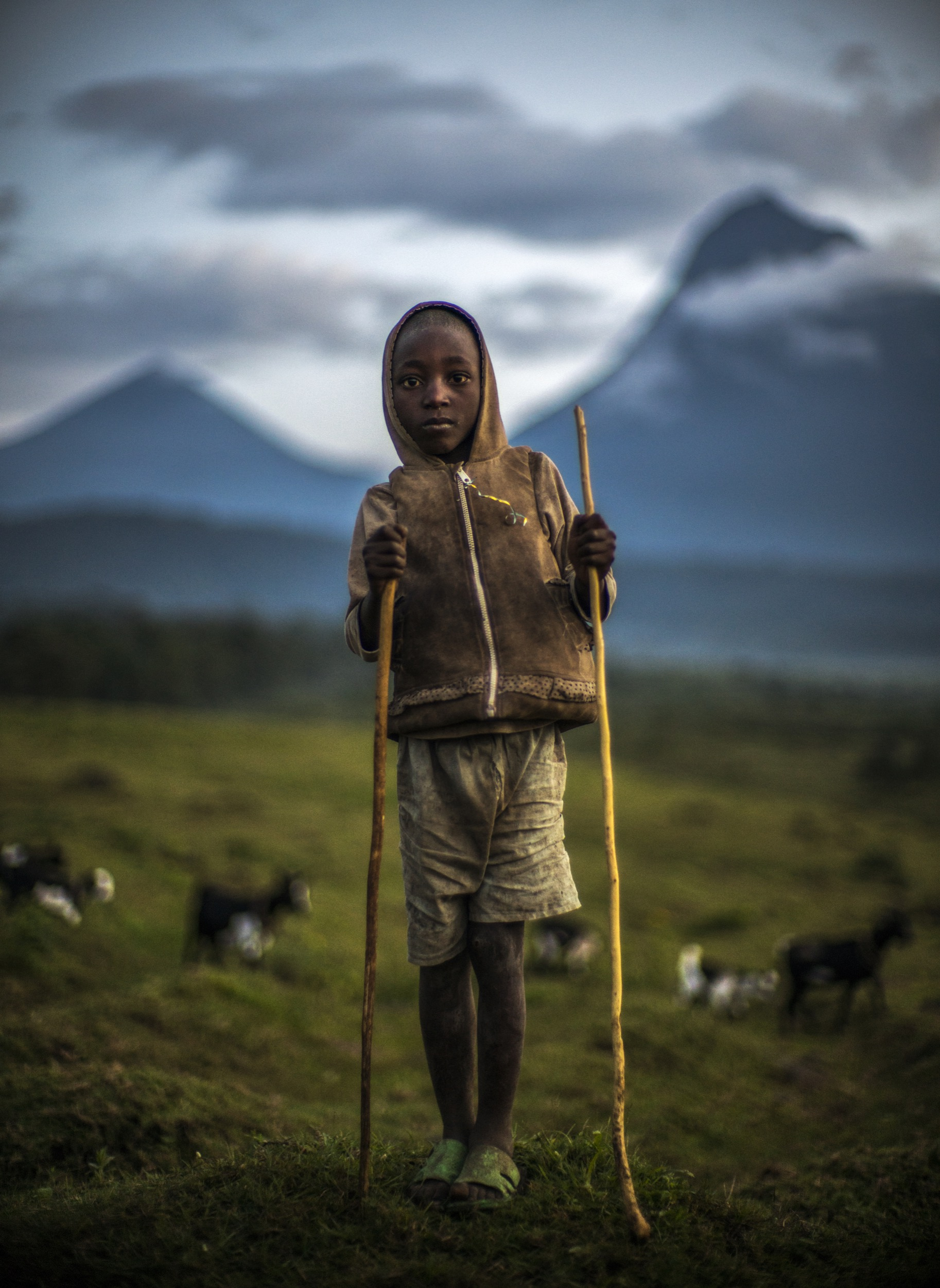 Sheepherder with Mount Mikeno. North Kivu, Democratic Republic of the Congo. 2016.