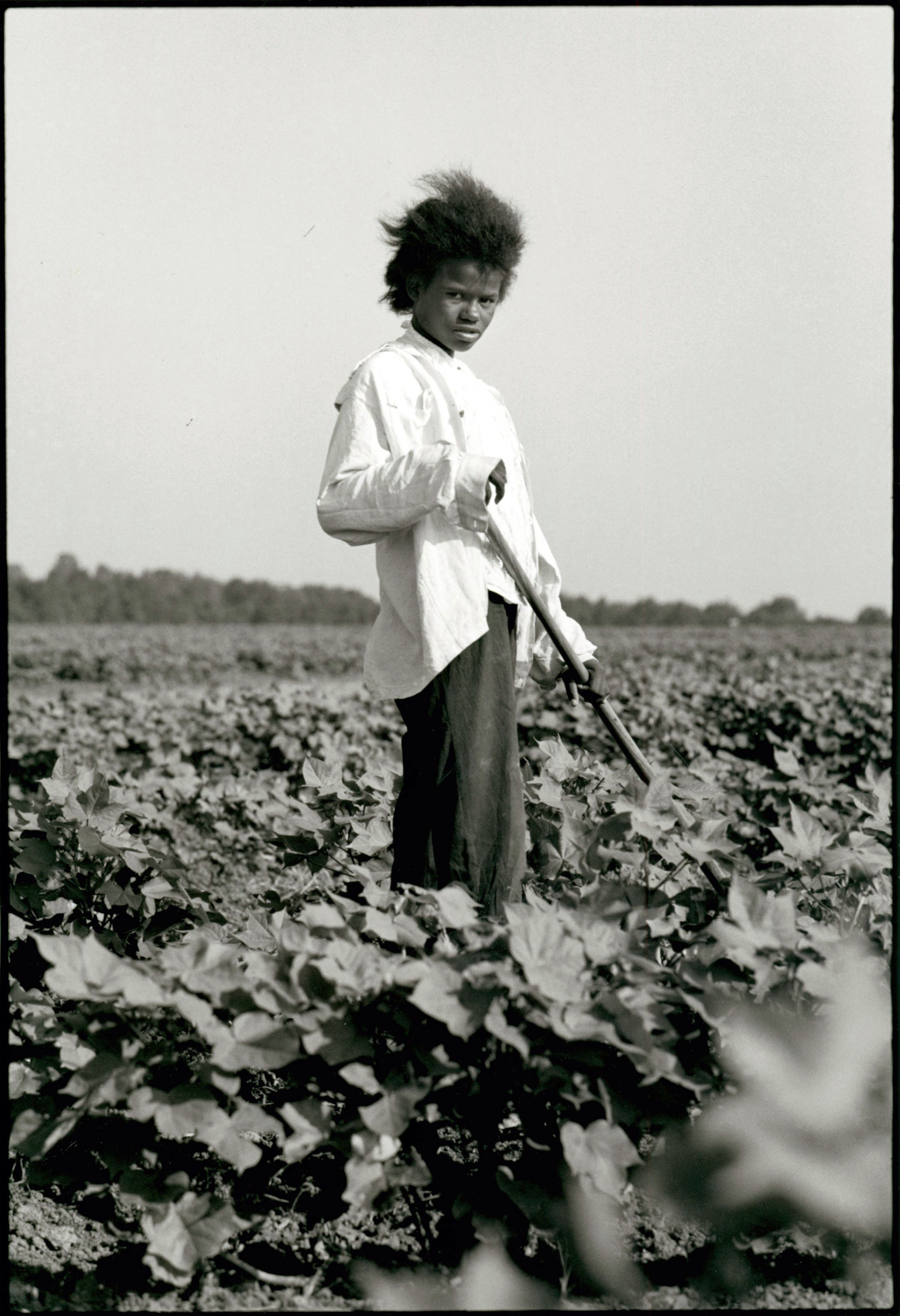 Tallahatchie County, Mississippi, 1963