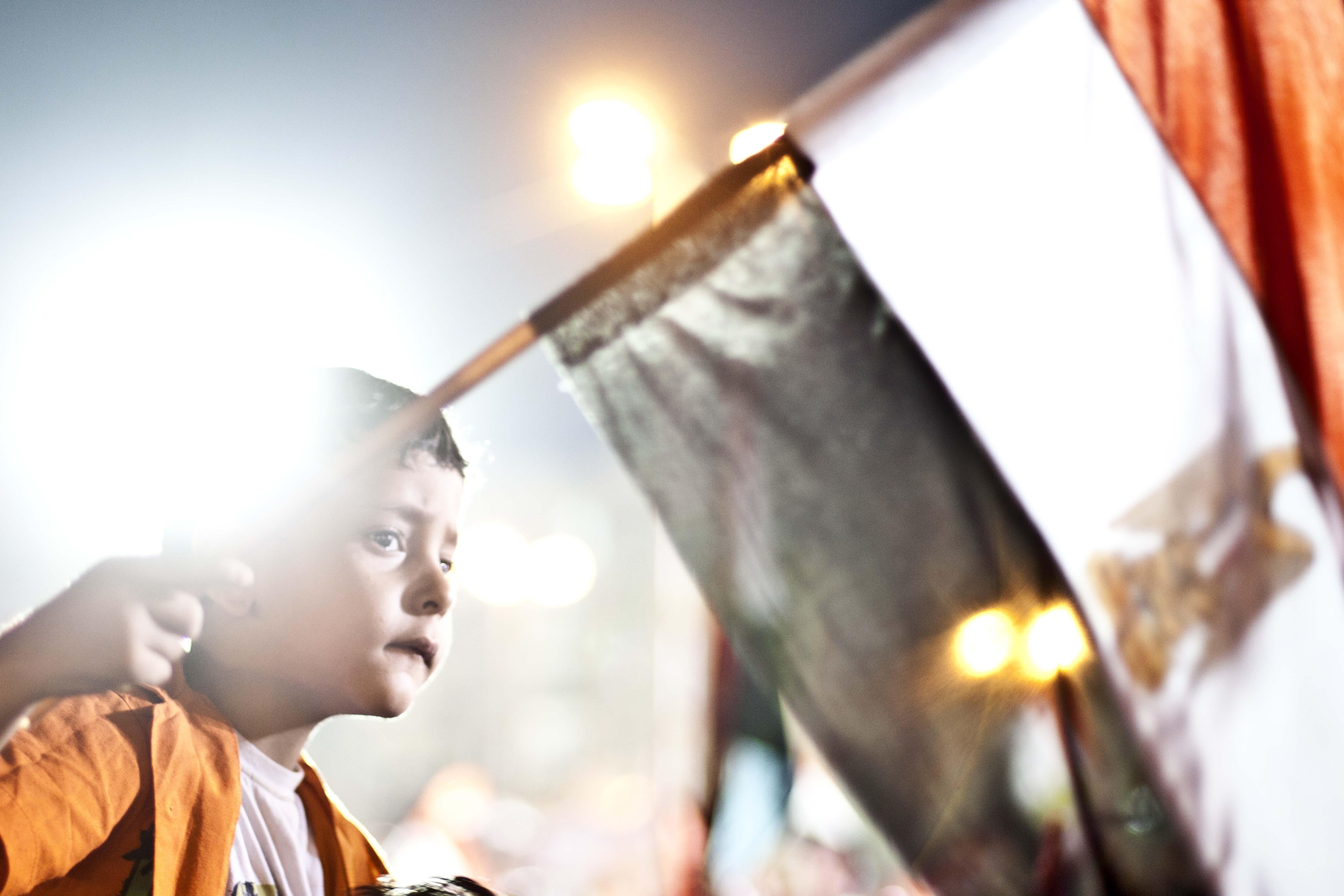 Egyptian's delegated demonstration