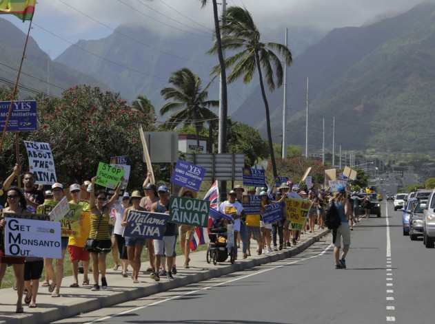 Maui's 2015 GMO moratorium bill march