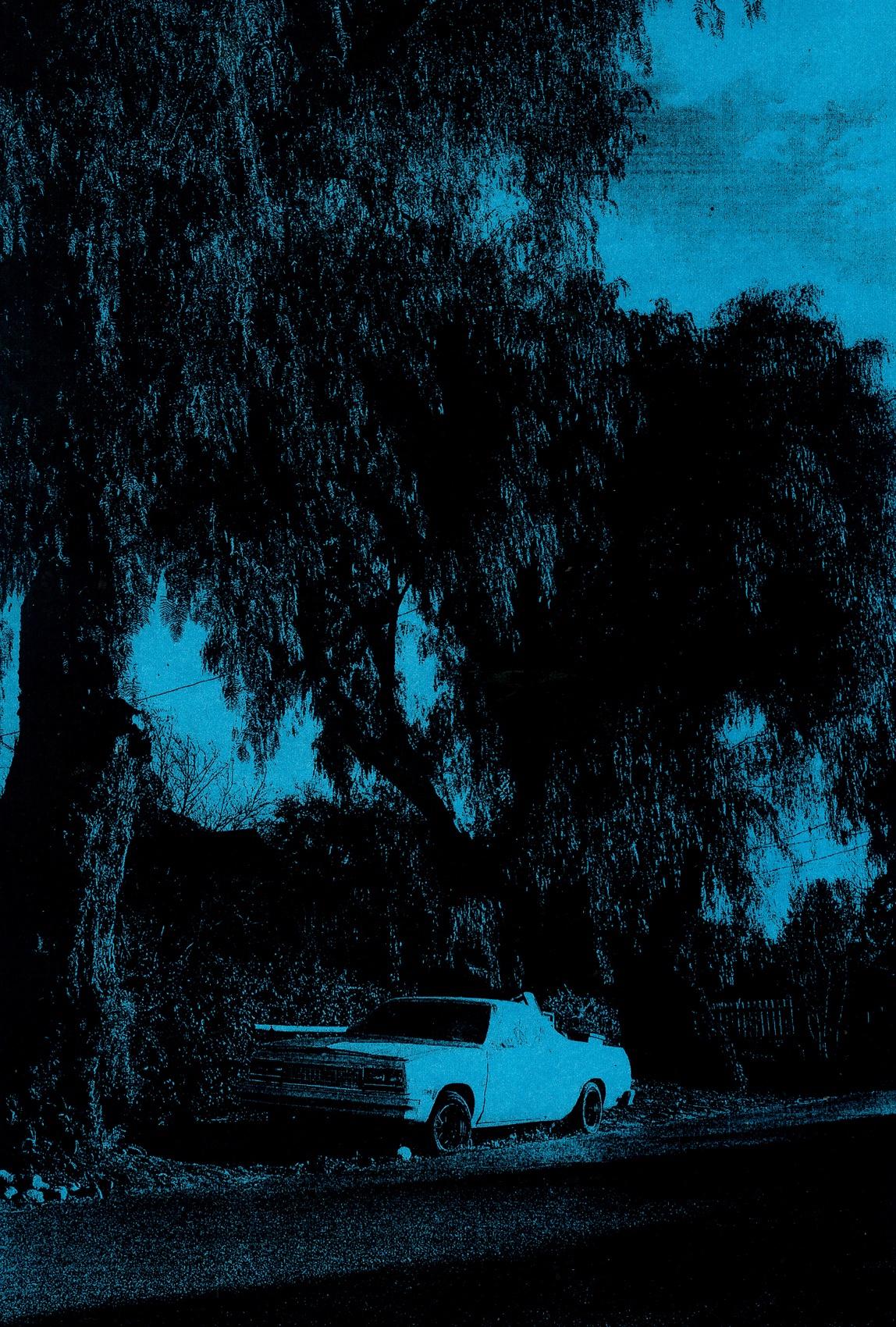 CAR_PALM_LA_BLUE_1