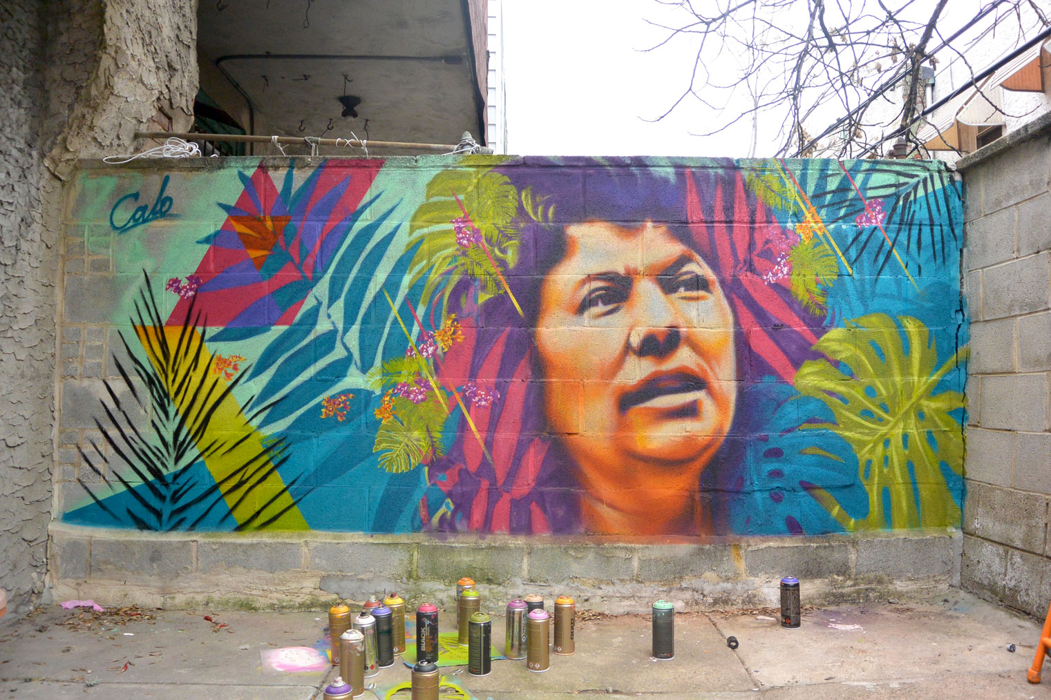A portrait of activist Berta Cáceres by Calo on the streets of Philadelphia. Courtesy of the artist.