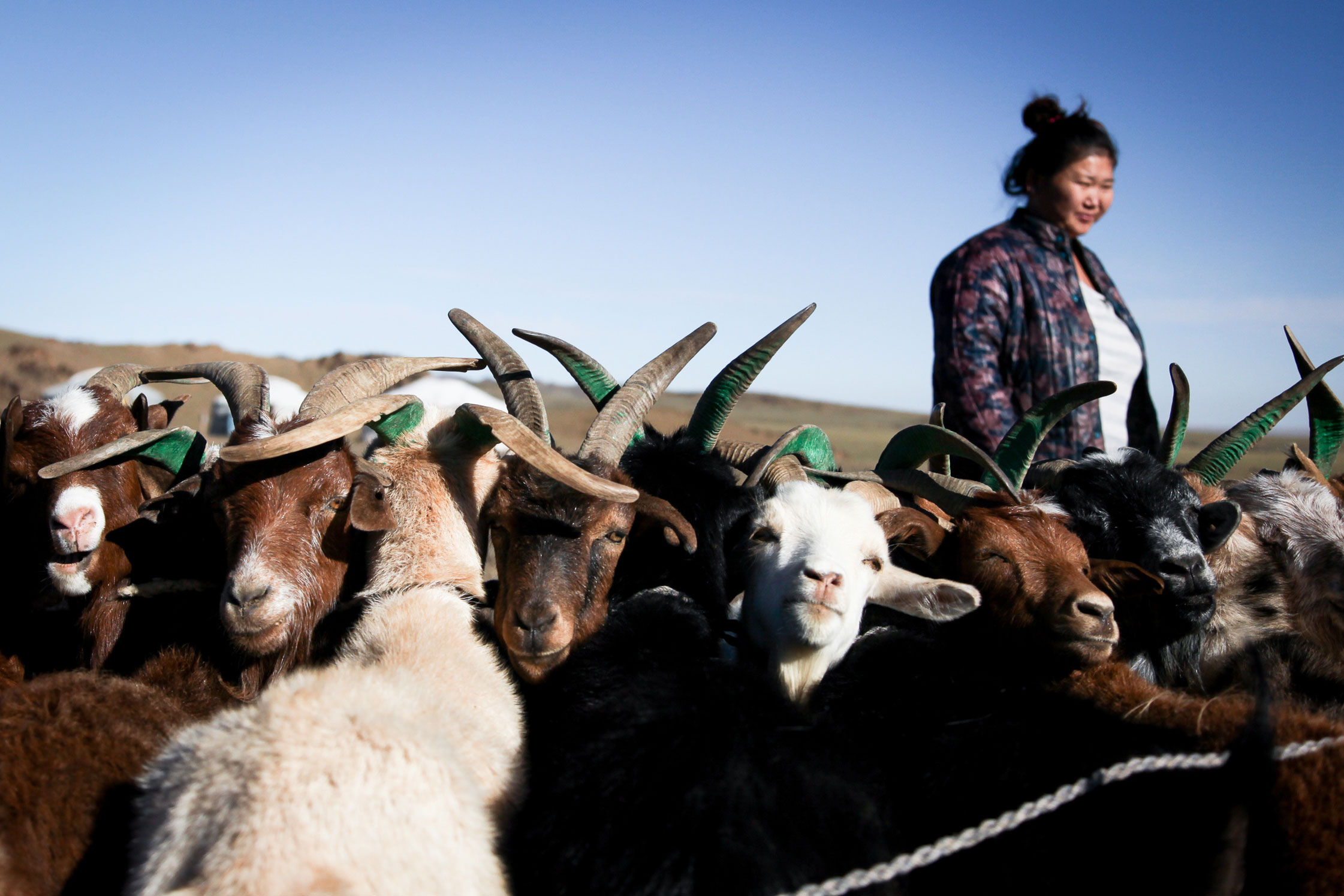 Dalanzadgad, Mongolia.
