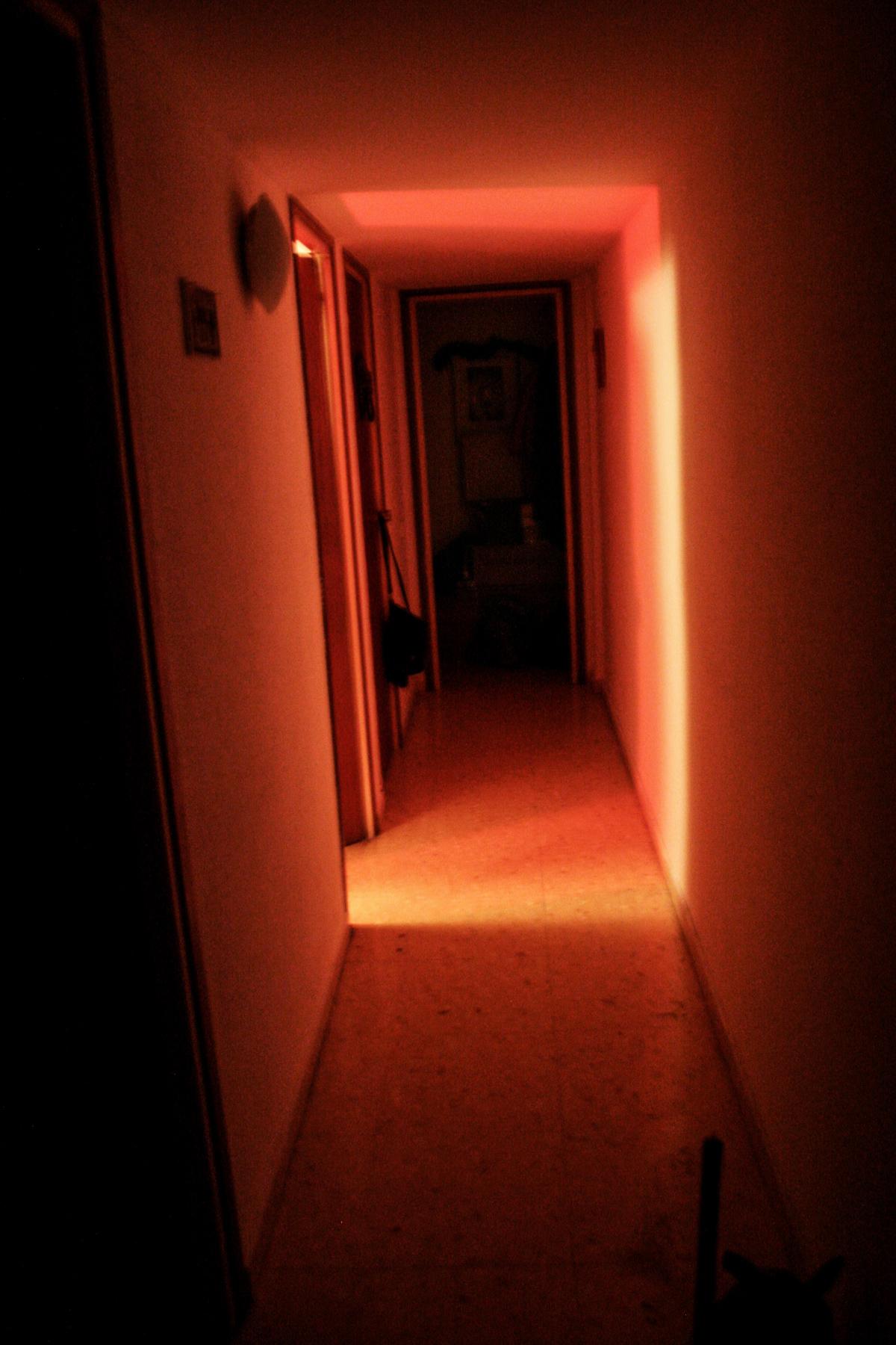 The purple room 03
