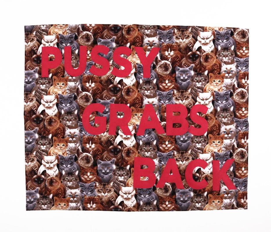 pussiesgrabback_1_orig