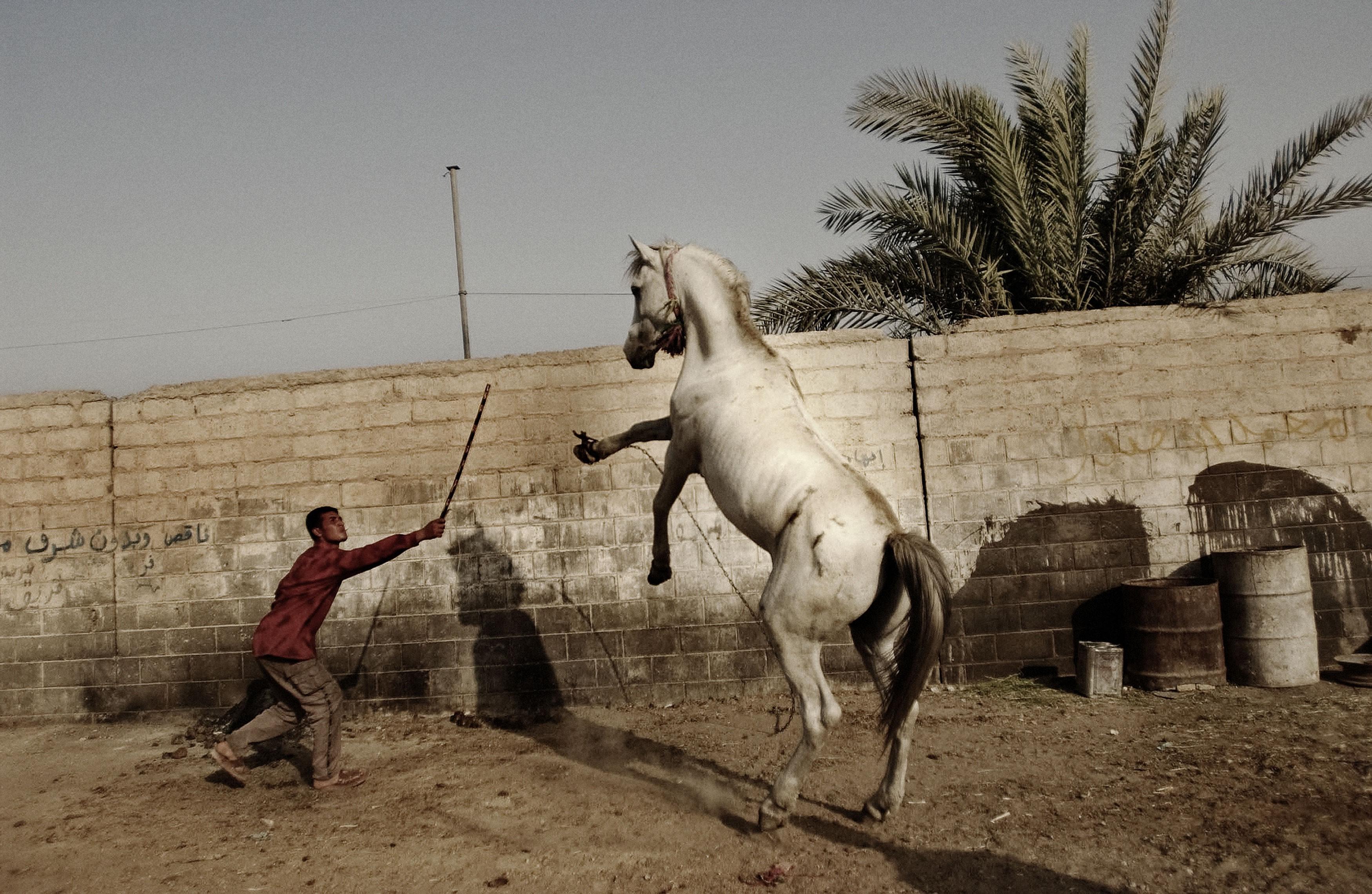 Baghdad, Iraq. July, 2004 © Moises Saman/ Magnum Photos