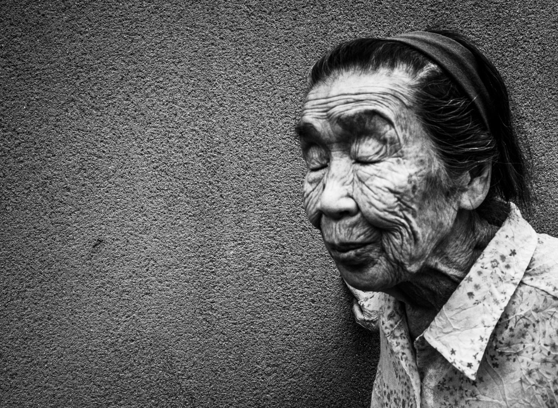 Wisdom, Kyoto 2016