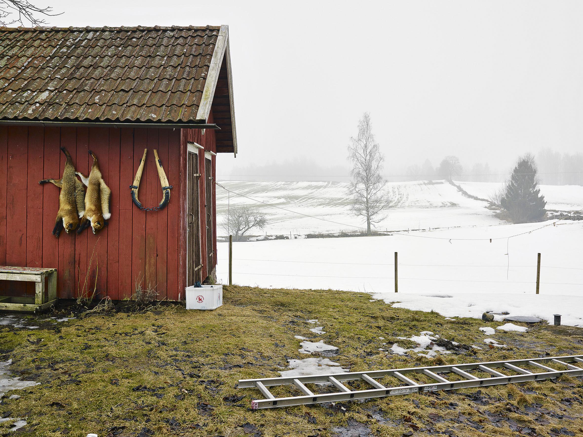Od, Västergötland, Sweden, March 14, 2011