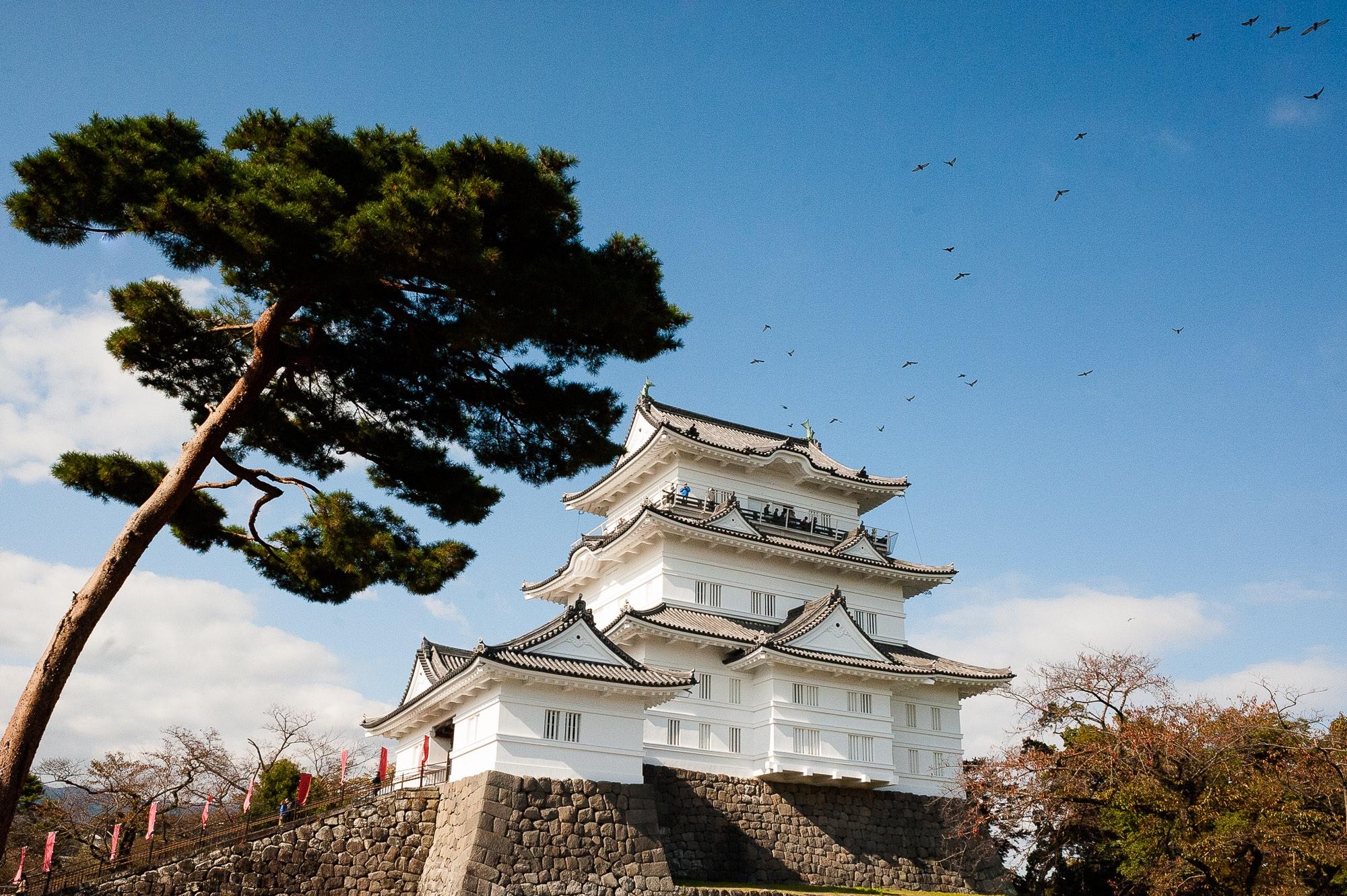Odawara Castle, Kanagawa