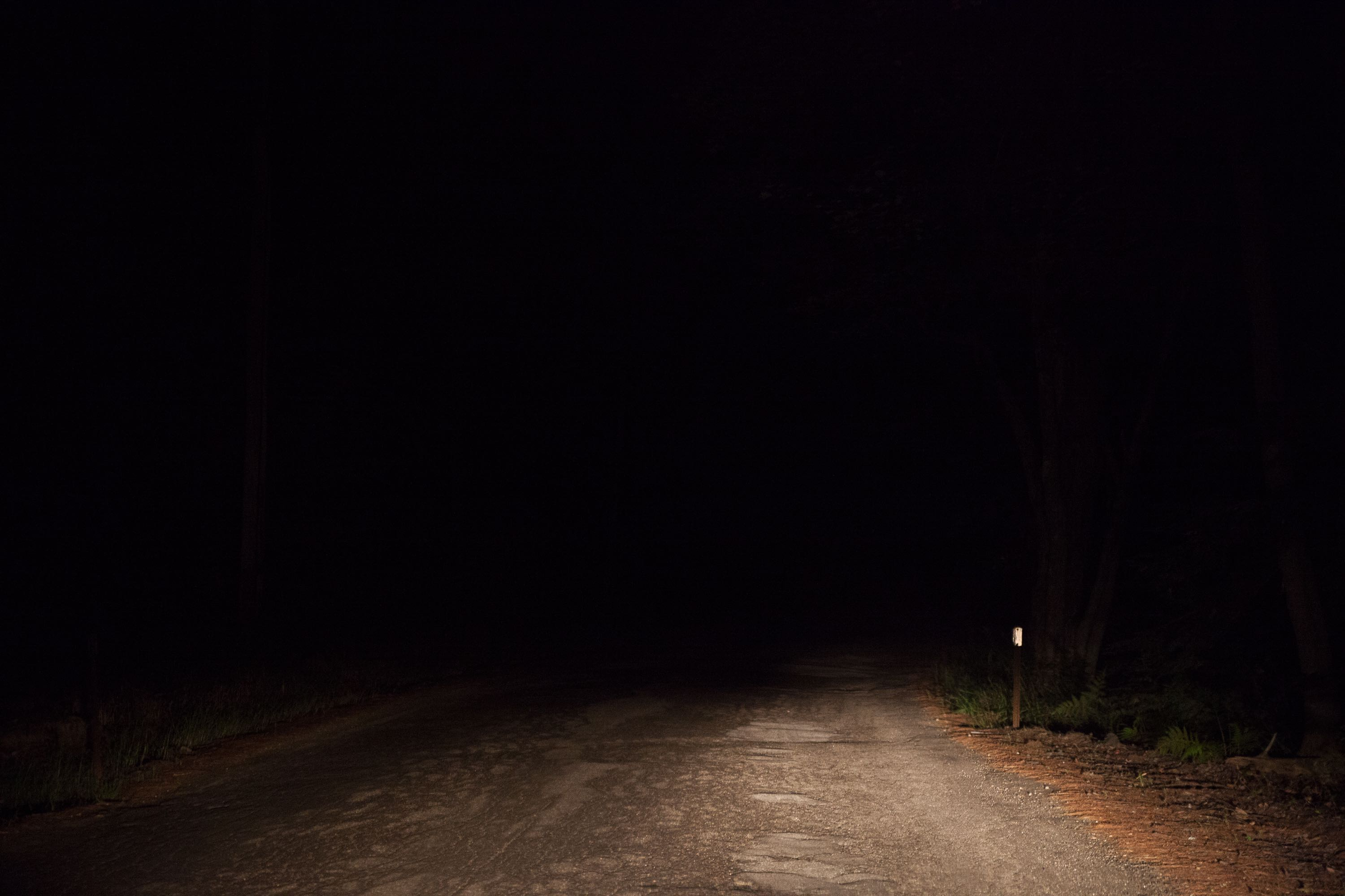 Hermit Woods Road (at night) ©Amani Willett