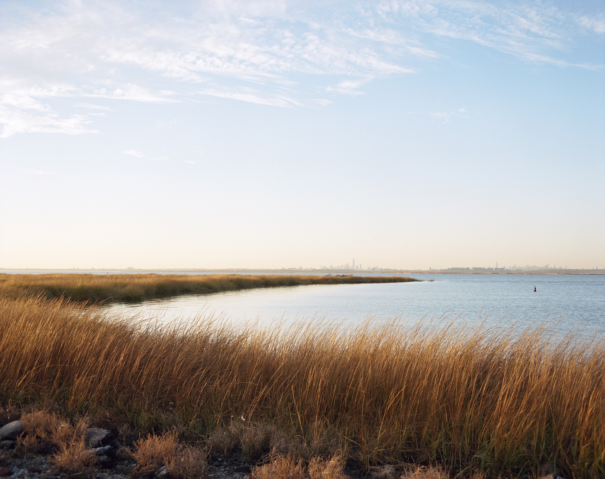 Marsh, Bay, Skyline, Jamaica Bay, Queens