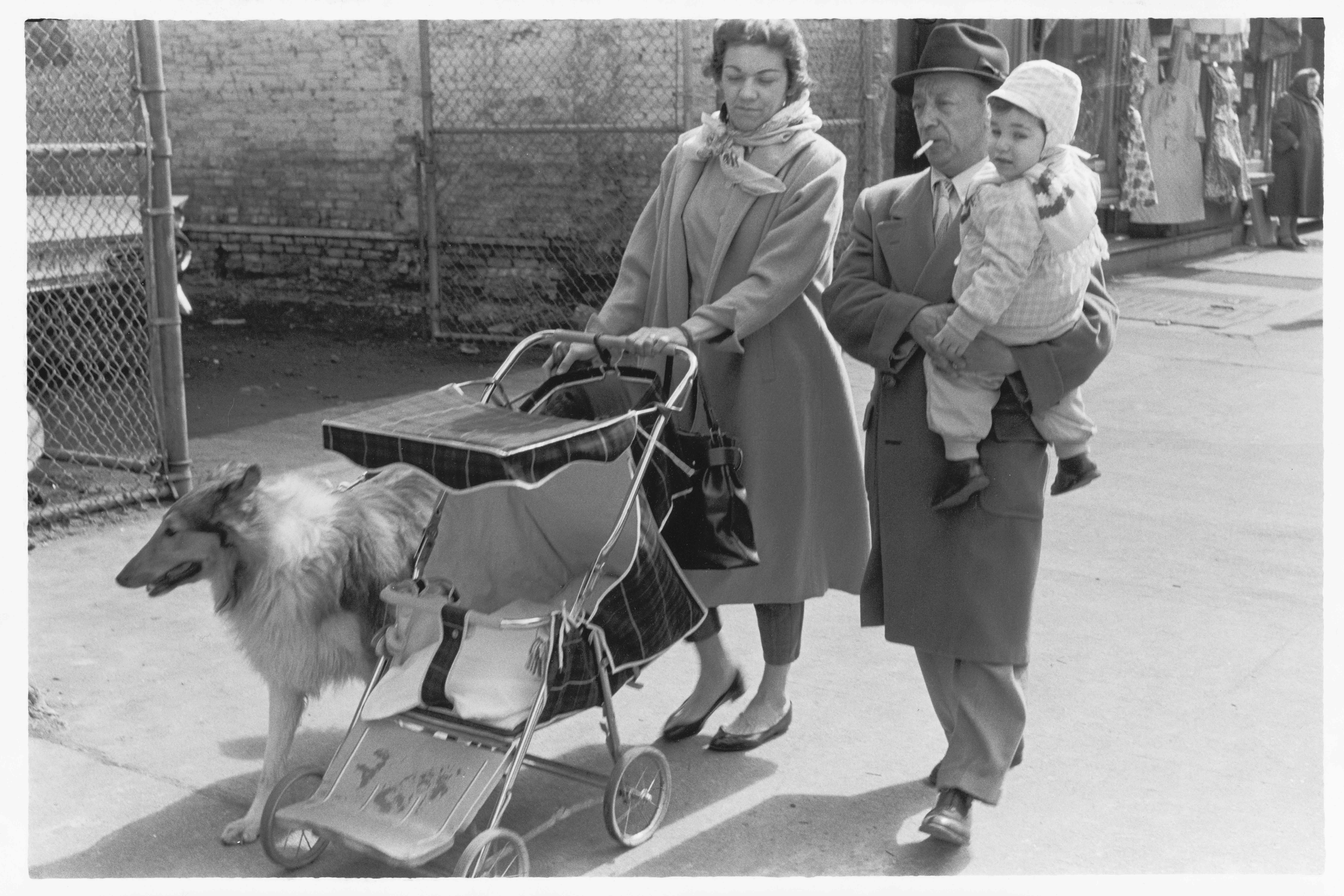 Family out for a walk with collie, 1960