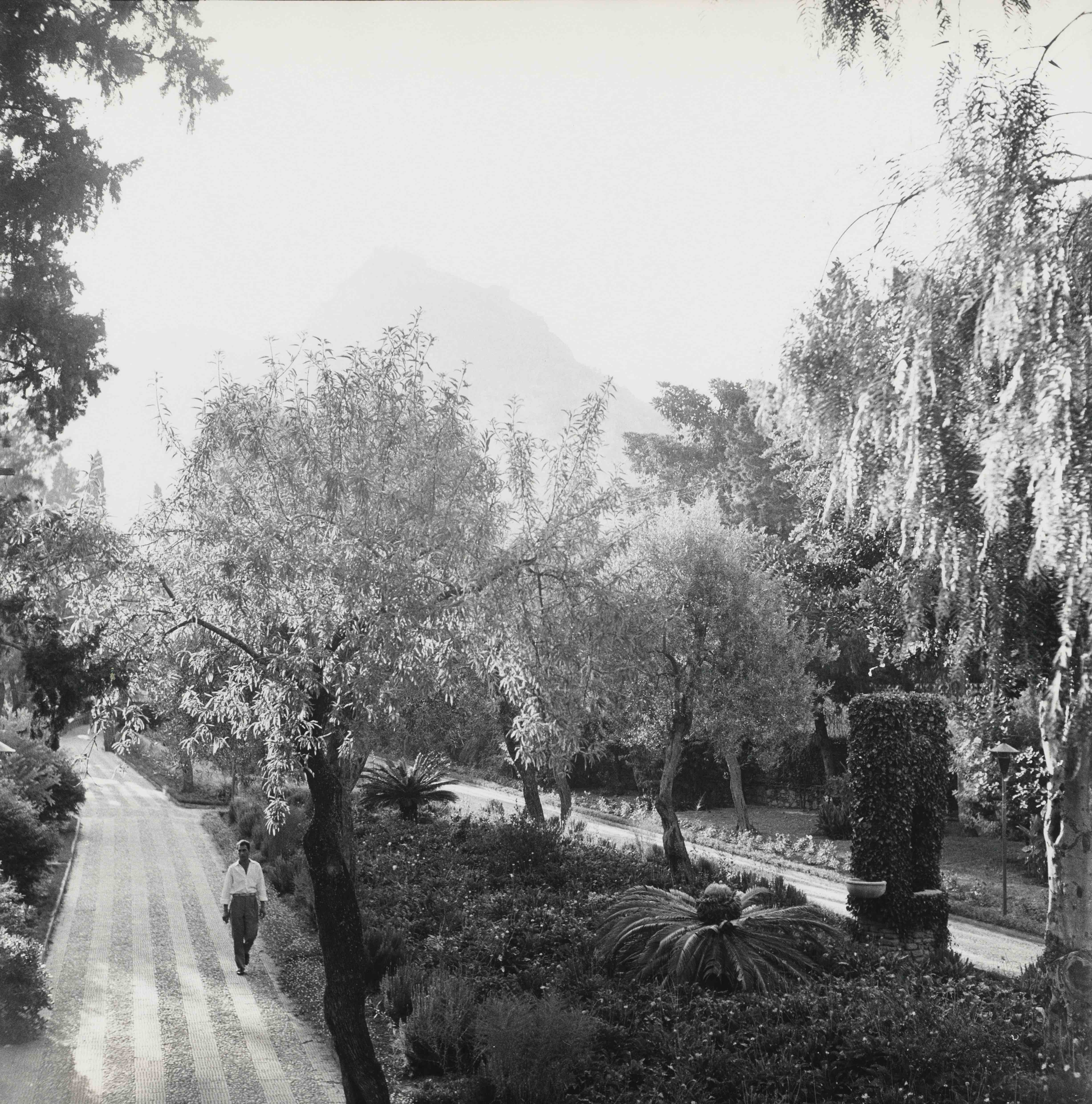 Public Garden, Taormina, Sicily, 1959