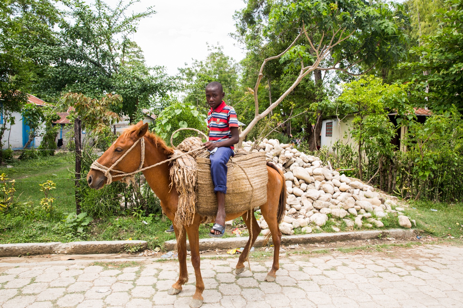 A young farmer on his horse in Central Plateau. Central Plateau is one of the poorest areas of Haiti. It borders the Dominican and most of this land is rural and off the grid.
