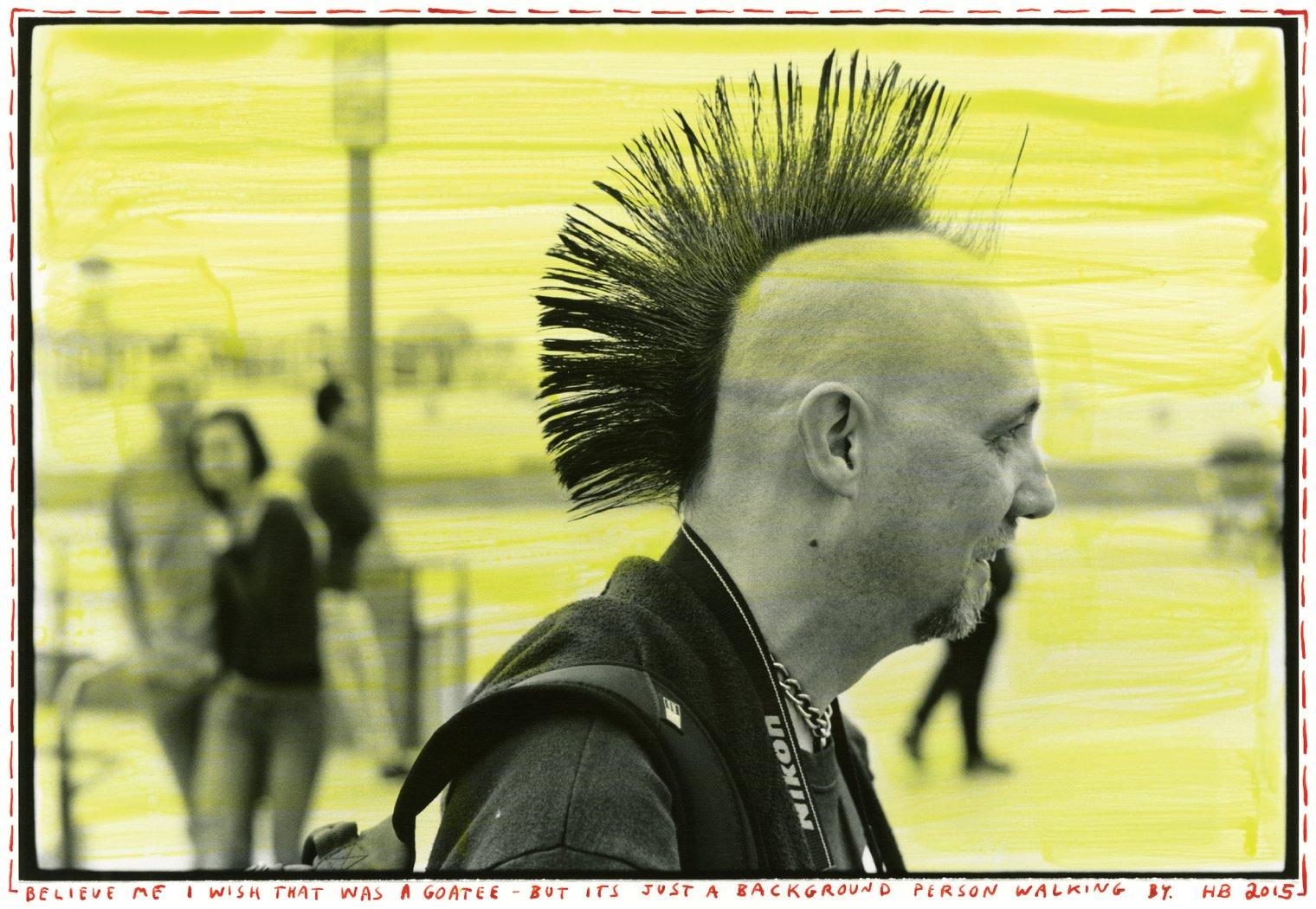 Bald-Hawk_1520x