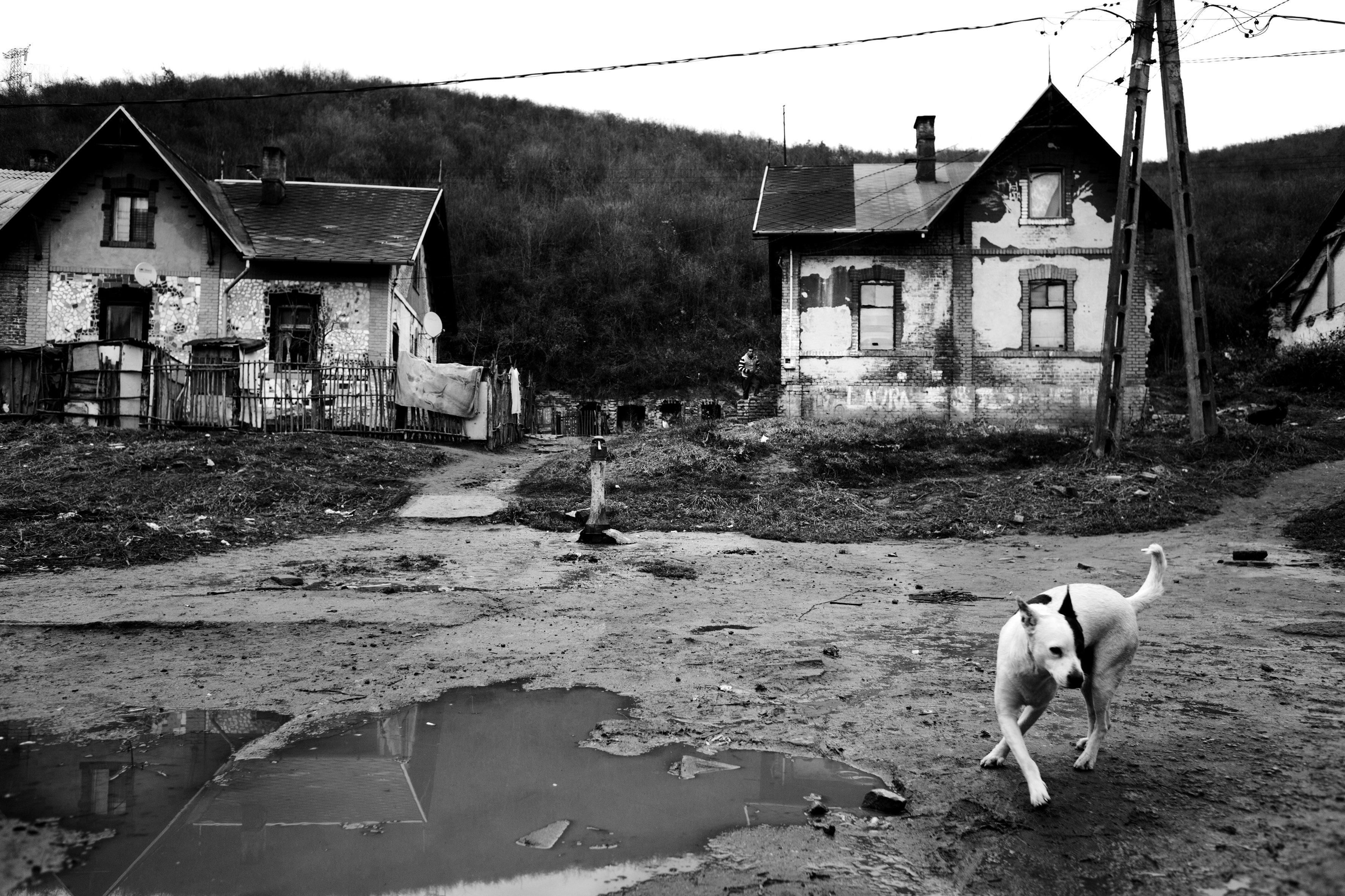 Ozd, Hungary, 2016© Åke Ericson