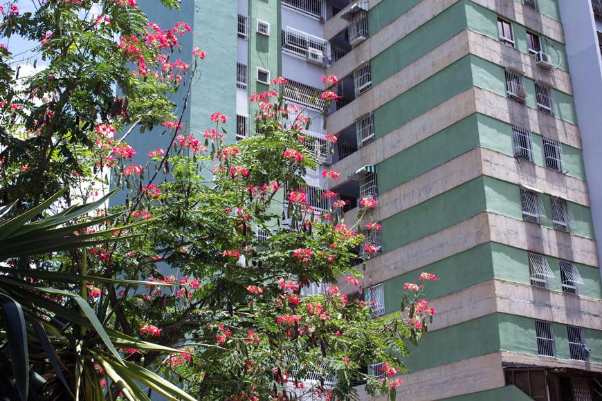 Venezuela building