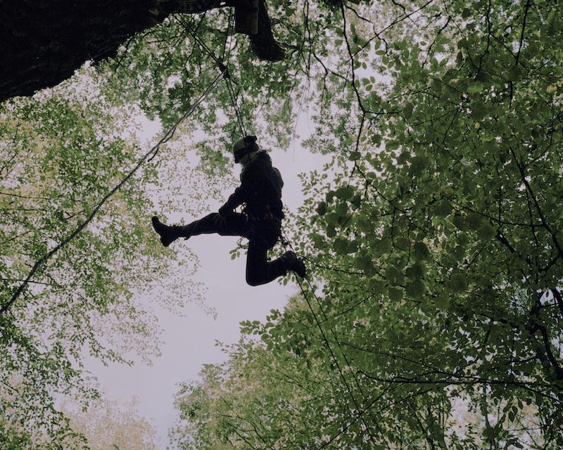 An activist on a zipline between trees