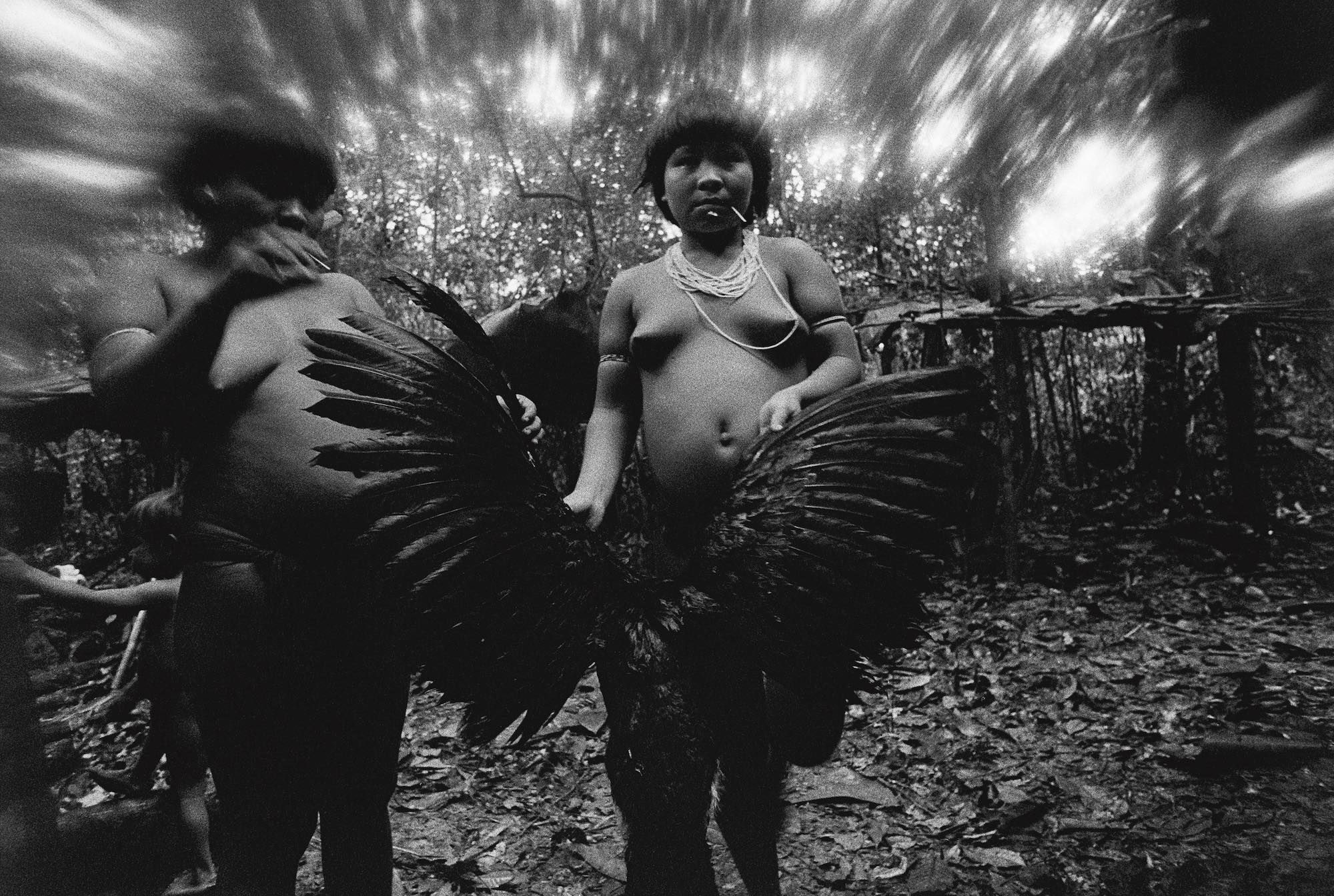 Amazon Candinha and Mariazinha Korihana thëri clean redbilled curassow, whose plumage is used to feather arrows, Catrimani, Roraima, 1974